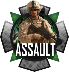 Assault Multi-Mod Package