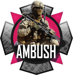 Ambush Multi-Mod Package
