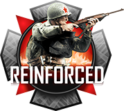 Reinforced Multi-Mod Package